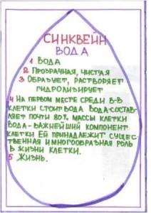 sinkvein