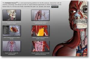 Скачать программа для изучения анатомии человека